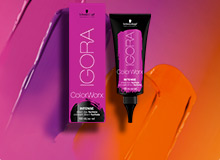 IGORA ColorWorx INTENSE